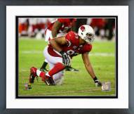 Arizona Cardinals Calais Campbell 2014 Action Framed Photo