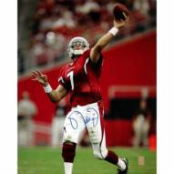 "Arizona Cardinals Matt Leinart Action Signed 16"" x 20"" Photo"