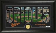 Baltimore Orioles Silhouette Bronze Coin Panoramic Photo Mint