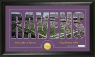 Baltimore Ravens Silhouette Bronze Coin Panoramic Photo Mint