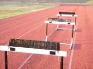 "Blazer Hurdle Sweep 3"" + Fixture"