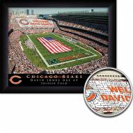 Chicago Bears Personalized Framed Stadium Print