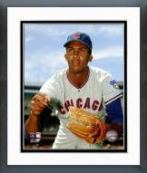 Chicago Cubs Ferguson Jenkins 1968 Posed Framed Photo