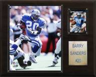 "Detroit Lions Barry Sanders 12 x 15"" Player Plaque"