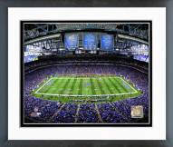 Detroit Lions Ford Field 2014 Framed Photo