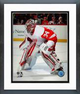 Detroit Red Wings Petr Mrazek 2014-15 Action Framed Photo