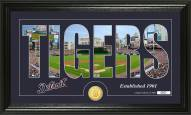 Detroit Tigers Silhouette Bronze Coin Panoramic Photo Mint