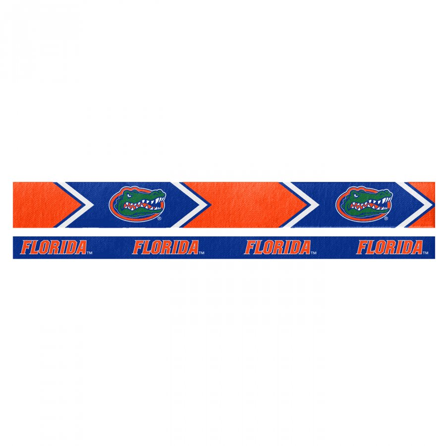 Florida Gators Headband Set
