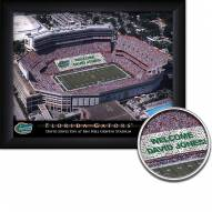 Florida Gators Personalized Framed Stadium Print