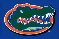 "Florida Gators 20"" x 30"" Tufted Rug"