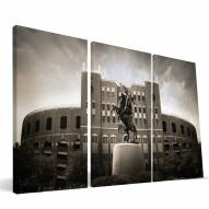 "Florida State Seminoles 24"" x 48"" Stadium Canvas Print"