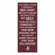 Florida State Seminoles Canvas Color Subway Art