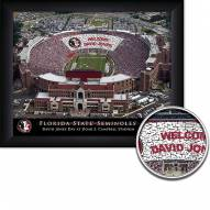 Florida State Seminoles Personalized Framed Stadium Print