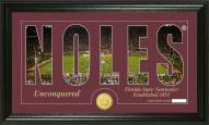 Florida State Seminoles Silhouette Bronze Coin Panoramic Photo Mint