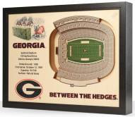 Georgia Bulldogs Stadium View Wall Art