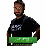 Go Pro Workouts Baseball Training Program - Adam Eaton