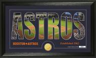 Houston Astros Silhouette Bronze Coin Panoramic Photo Mint