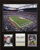 "Houston Texans 12"" x 15"" Stadium Plaque"