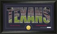 Houston Texans Silhouette Bronze Coin Panoramic Photo Mint