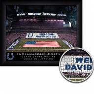 Indianapolis Colts Personalized Framed Stadium Print