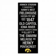 Iowa Hawkeyes Canvas Color Subway Art
