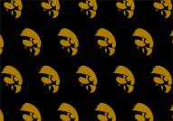 Iowa Hawkeyes College Repeat Area Rug