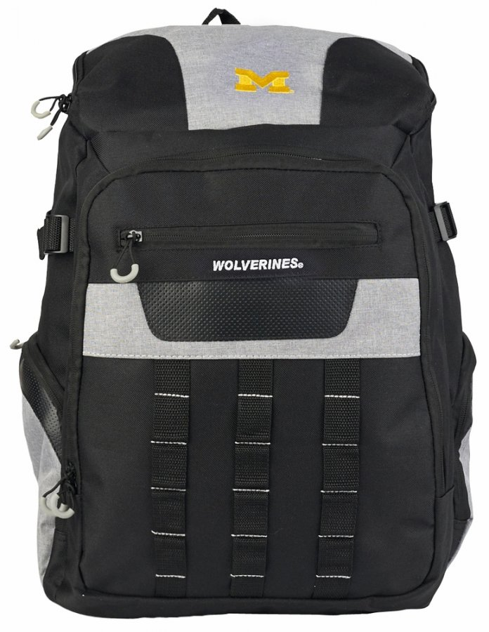 Michigan Wolverines Franchise Backpack