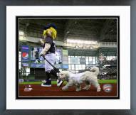 Milwaukee Brewers Hank the Dog Framed Photo