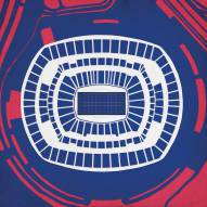 New York Giants Met Life Stadium Print