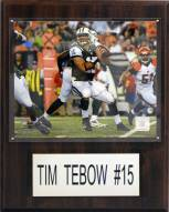 "New York Jets Tim Tebow 12 x 15"" Player Plaque"
