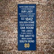 Notre Dame Fighting Irish Canvas Color Subway Art