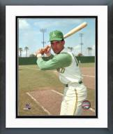 Oakland Athletics Bert Campaneris Framed Photo