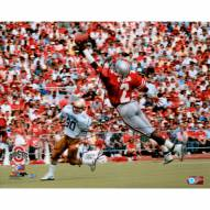 "Ohio State Buckeyes Cris Carter One Handed Catch Signed 16"" x 20"" Photo"