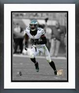 Philadelphia Eagles Malcolm Jenkins 2014 Spotlight Action Framed Photo