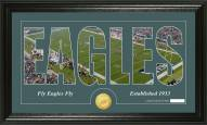 Philadelphia Eagles Silhouette Bronze Coin Panoramic Photo Mint