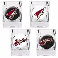 Arizona Coyotes Collector's Shot Glass Set
