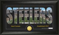 Pittsburgh Steelers Silhouette Bronze Coin Panoramic Photo Mint