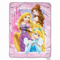 Princess Classic Dreams Micro Raschel Throw Blanket
