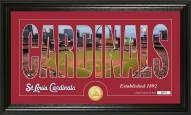 St. Louis Cardinals Silhouette Bronze Coin Panoramic Photo Mint