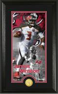 Tampa Bay Buccaneers Jameis Winston Supreme Bronze Coin Panoramic Photo Mint