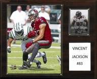 "Tampa Bay Buccaneers Vincent Jackson 12"" x 15"" Player Plaque"