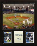 "Tampa Bay Rays 12"" x 15"" Tropicana Field Stadium Plaque"