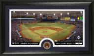 Tampa Bay Rays Infield Dirt Coin Panoramic Photo Mint