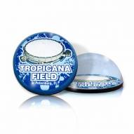 Tampa Bay Rays Tropicana Field Crystal Magnet