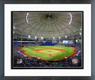 Tampa Bay Rays Tropicana Field 2014 Framed Photo