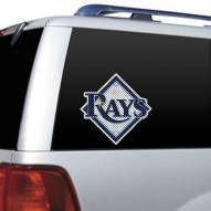 Tampa Bay Rays Window Film