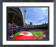 Toronto Blue Jays Rogers Centre 2014 Framed Photo