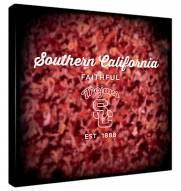 USC Trojans Canvas Logo Art